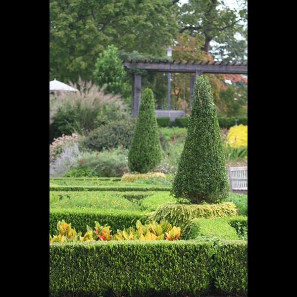 Planting in the Parterre Garden at the Atlanta Botanical Garden in Atlanta, Georgia, designed by Tunnell and Tunnell Landscape Architecture.