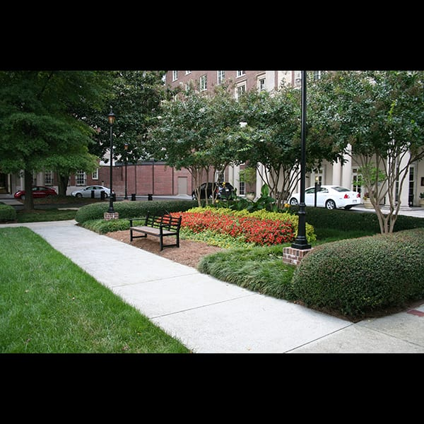 Hedge, annual color, and bench in rear courtyard at the Biltmore Hotel and Apartments in Atlanta, Georgia, landscape by Tunnell and Tunnell Landscape Architecture.