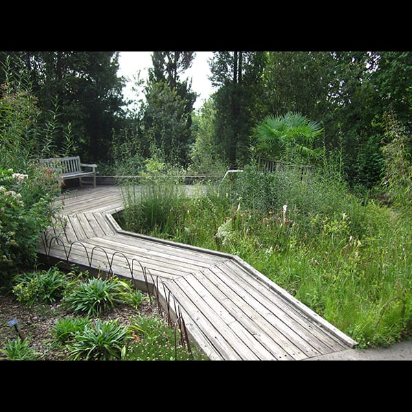 Boardwalk in the Children's Garden at the Atlanta Botanical Garden in Atlanta, Georgia, project management by Tunnell and Tunnell Landscape Architecture.