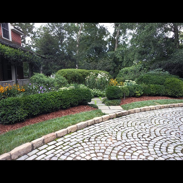 cobble paving and perennials