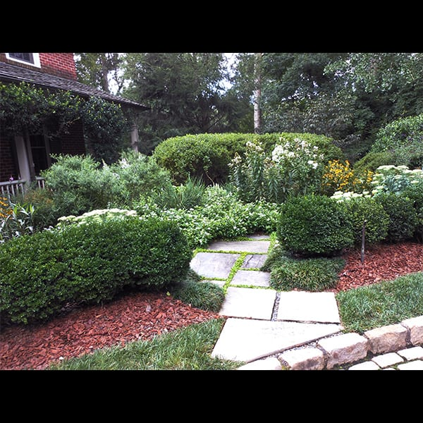 stepping stone path and perennial planting