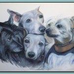 Portrait of Dogs by Thomas Adamski