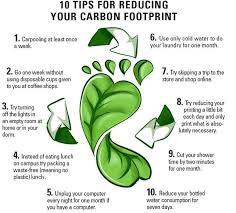 Carbon Footprint And Climate Change Ambassador Report