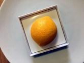 destructure_citron_cedric-grolet_le-meurice_07
