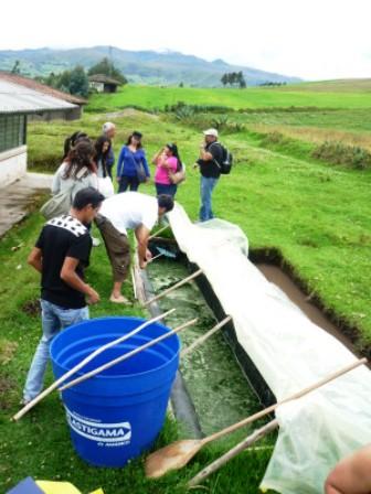 Roger Sarín cultivando espirulina en Ecuador