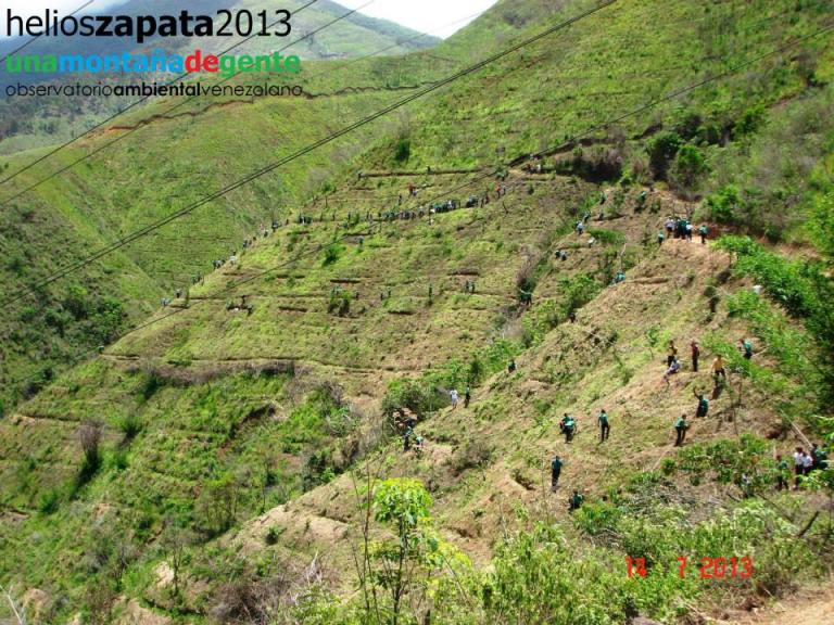 Hacen una importante labor de reforestación, limpieza y seguimiento de factores de riesgo
