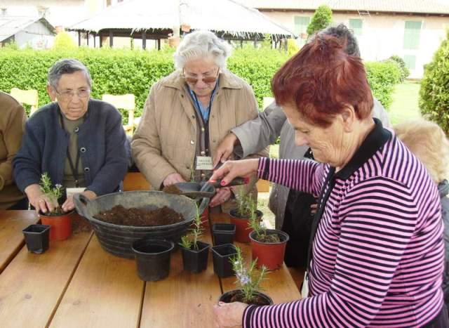Jardinería terapéutica. Foto cortesía www.diariodeleon.es
