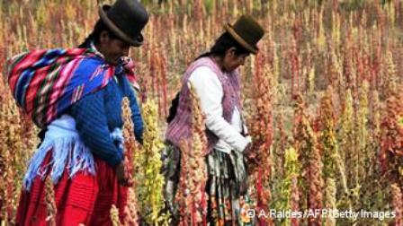 El empoderamiento de los agricultores locales no puede perderse de vista. Foto: DWE
