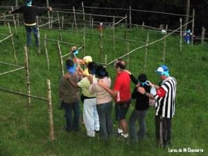 Talleres de Ecología Organizacional.
