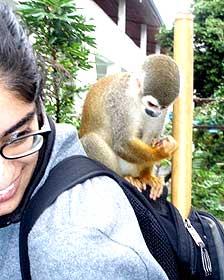 Pria Anand recolectó los hongos en un viaje a Ecuador en 2008.