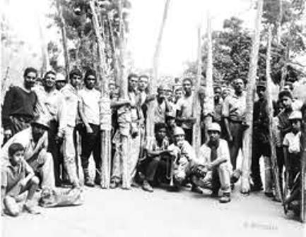 Foto histórica de los Palmeros de Chacao, cortesía de Alcaldía de Chacao