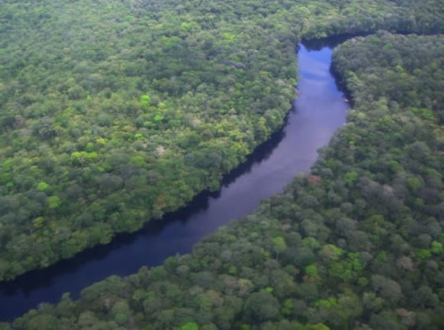 Amazonia con la RAIG