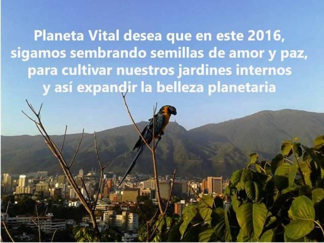 Feliz 2016 de Planeta Vital