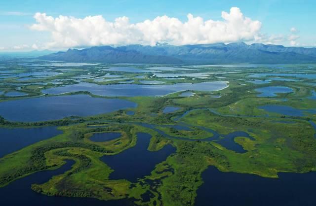 Vista aérea del Gran Pantanal, ubicado en la región del Mato Grosso, en Brasil. AFP