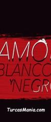 Amor En Blanco Y Negro Capitulo 10 Online Novela Turca Turcasmania