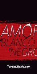 Amor En Blanco Y Negro Capitulo 12 Online Novela Turca Turcasmania