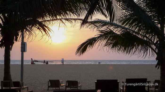 Solnedgang Sri Lanka