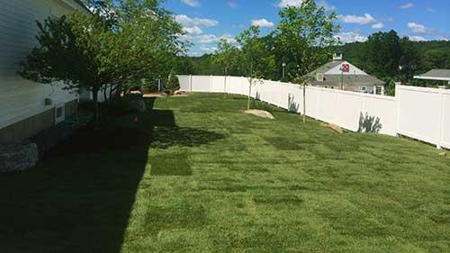 residential sod side yard lawn installation