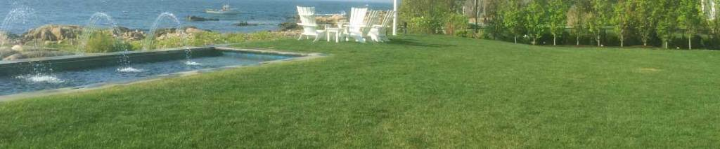 professional turf installation for commercial and residential landscapes