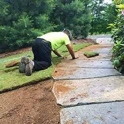 employment opportunities for seasonal sod installation laborers