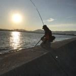 【目印落とし込み】上層を意識せよ?!地波止~神戸渡船で沖堤へ。ええサイズのん釣れたのになぁ(´;ω;`)