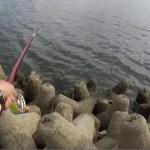 【テトラ前打ち】SMT(スーパーメタルトップ)の特性を活かし?!前アタリでガンガン掛けに行く釣り方したらめっちゃ楽しかった!