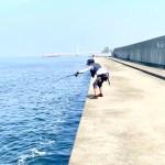 【黒鯛落とし込み(ヘチ釣り)】旬の尼崎フェニックスへ銀参郎MH300をブチ曲げに行ってきました