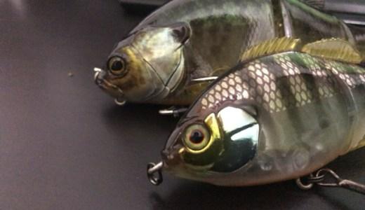 ジャッカルのギロンとチビタレルはどっちがいい?釣果に差があったことをここに記す!