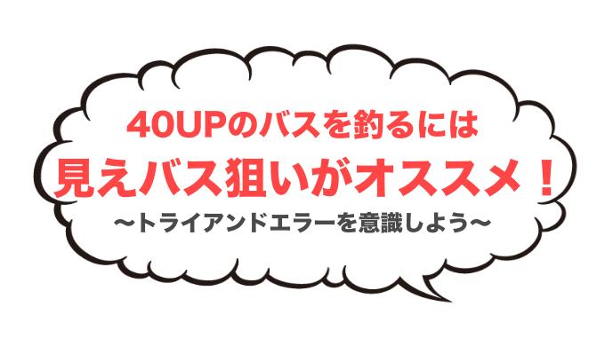 40UPバス アイキャッチ