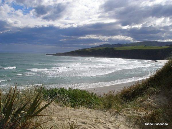 7 tips para visitar Nueva Zelanda