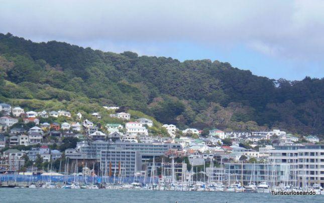 WELLINGTON NUEVA ZELANDA