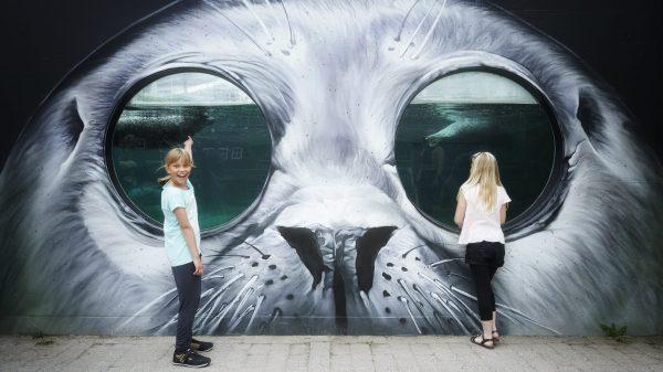 Den tyske grafittikunstner TASSO har udsmykket sælbassinet i Odense Zoo. (Foto: Odense Zoo)