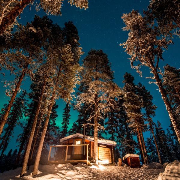 Nordlys over Sverige (Foto: Asaf Kliger/Visit Sweden)