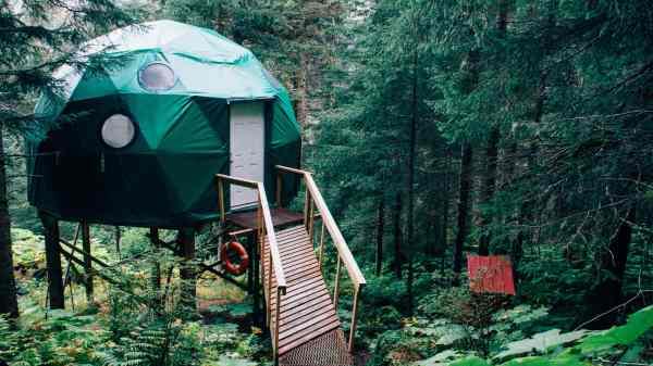 Trætop hytter og andre unikke boliger hitter på Airbnb. (Foto: Kyle Glenn)