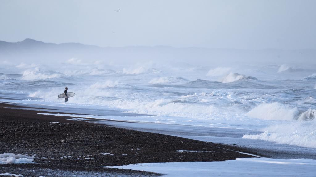 Forskerne skal bl.a. besøge Cold Hawaii. (Arkivfoto: Oliver Raatz)
