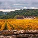 Dicas de viagem para Borgonha: passeios imperdíveis