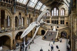museus de dinossauros na europa