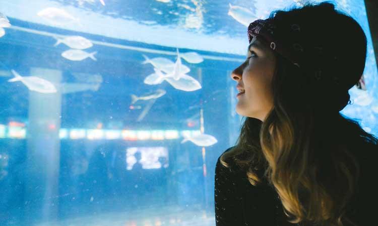 como chegar aquario de barcelona