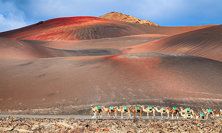 Lanzarote Ilhas Canárias
