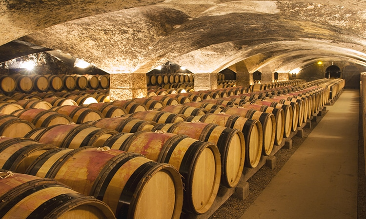 visite as vinicolas do porto