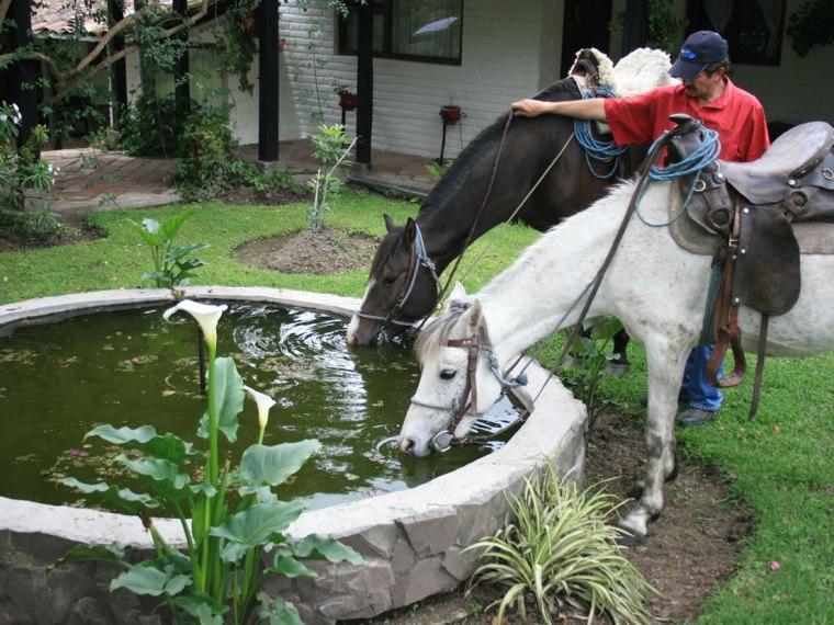 Cabalgatas y paseos a caballo – Imbabura, Ecuador