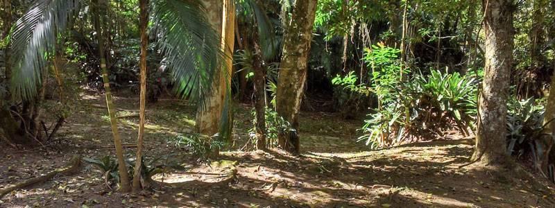 parque-nacional-da-serra-dos-orgaos-1