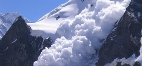 alud de nieve, picos de Europa