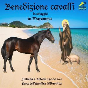 Benedizione Cavalli in spiaggia in Maremma