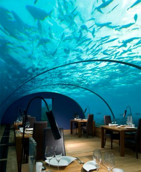 Ithaa Undersea Restaurant.