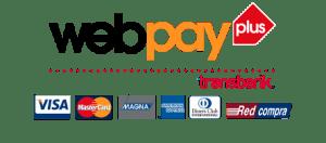 Imagen de pago por webpay