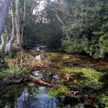 Río Aguamía, Ribadesella