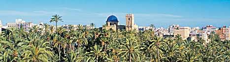 Elche, la ciudad de las palmeras (Alicante)
