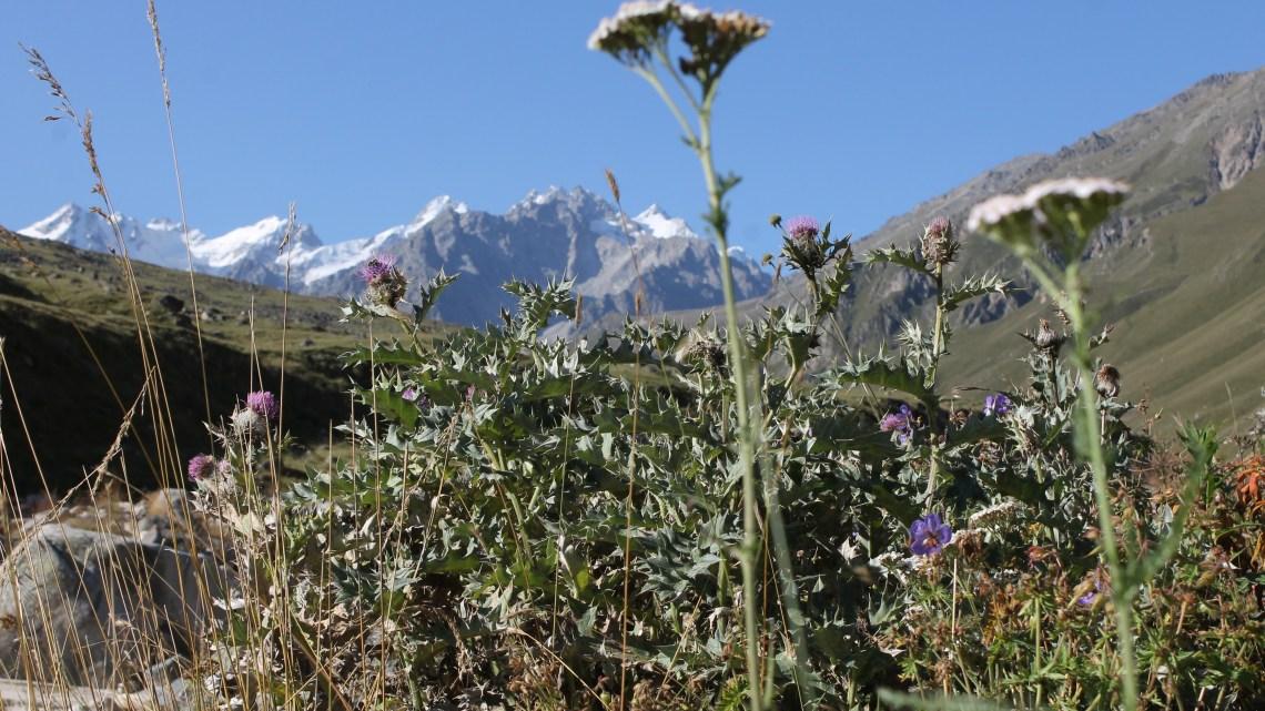 Красоты плато Канжол