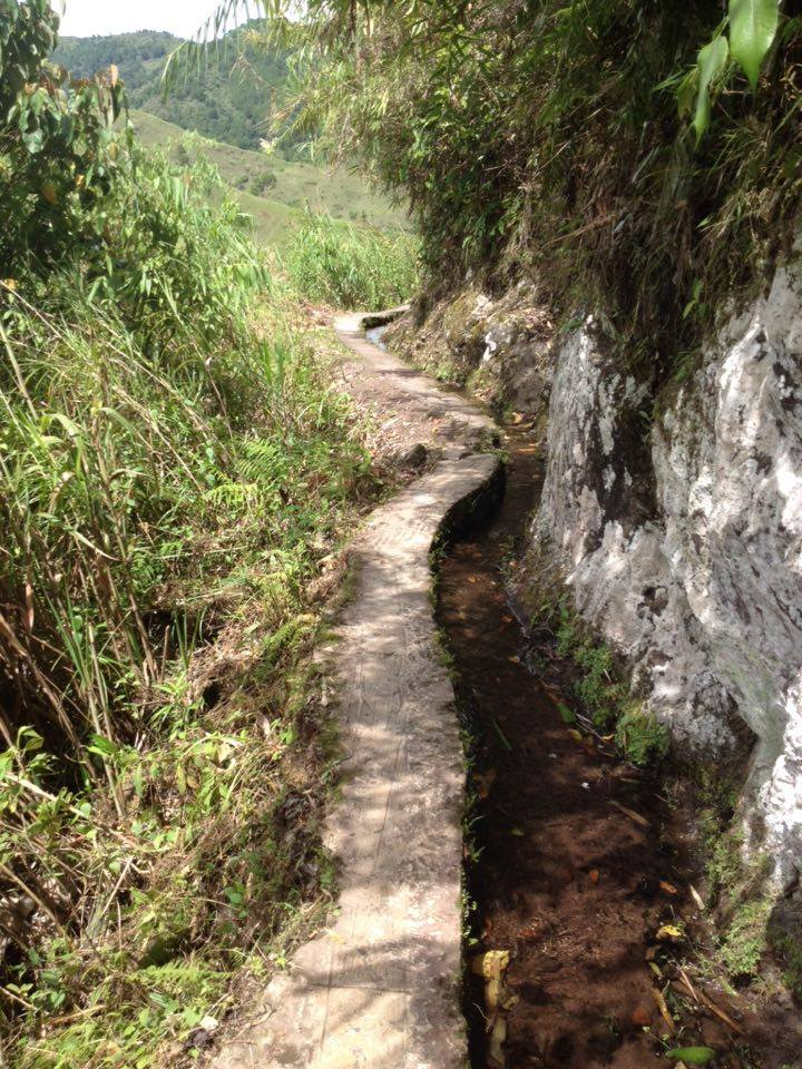 This is how pathways look going to Buscalan Village, Kalinga